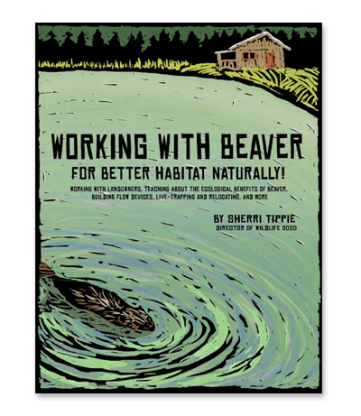 working-with-beaver