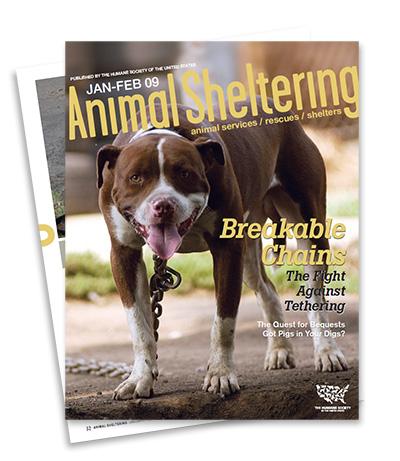 animal-sheltering-magazine-large