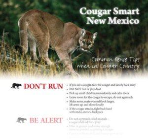 Cougar Smart Flyer