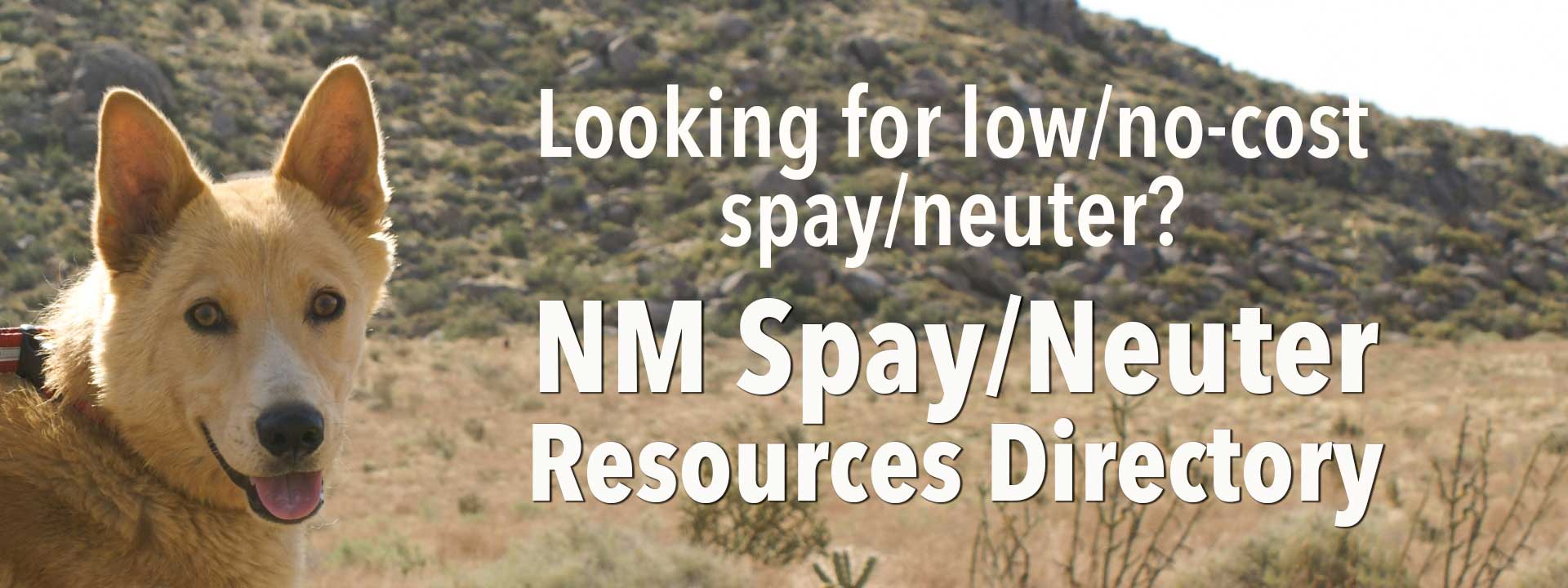 NM Spay/Neuter Resources Directory