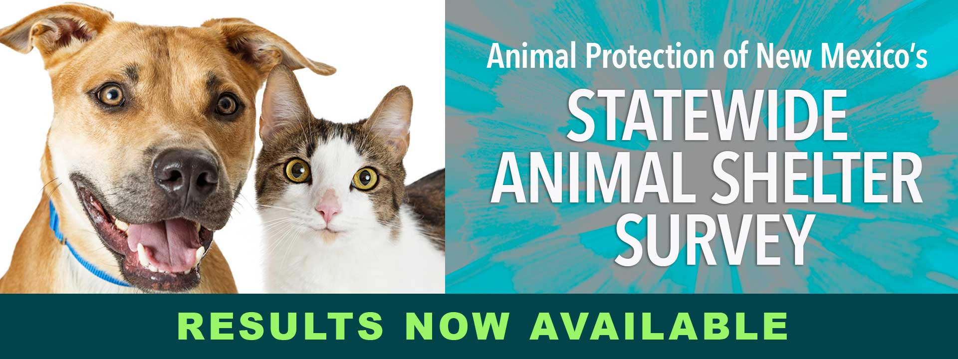 2018 New Mexico Animal Shelter Survey