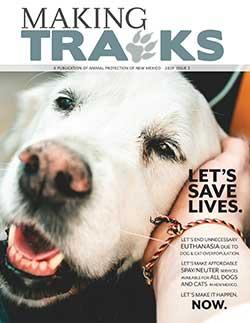 Making Tracks 2019 Issue 2