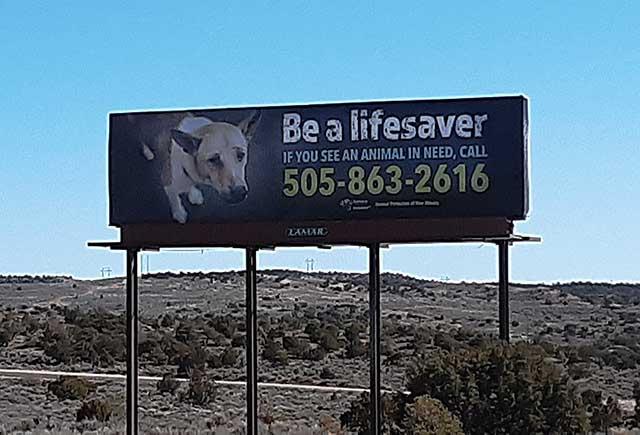 BILLBOARD - Be a Lifesaver