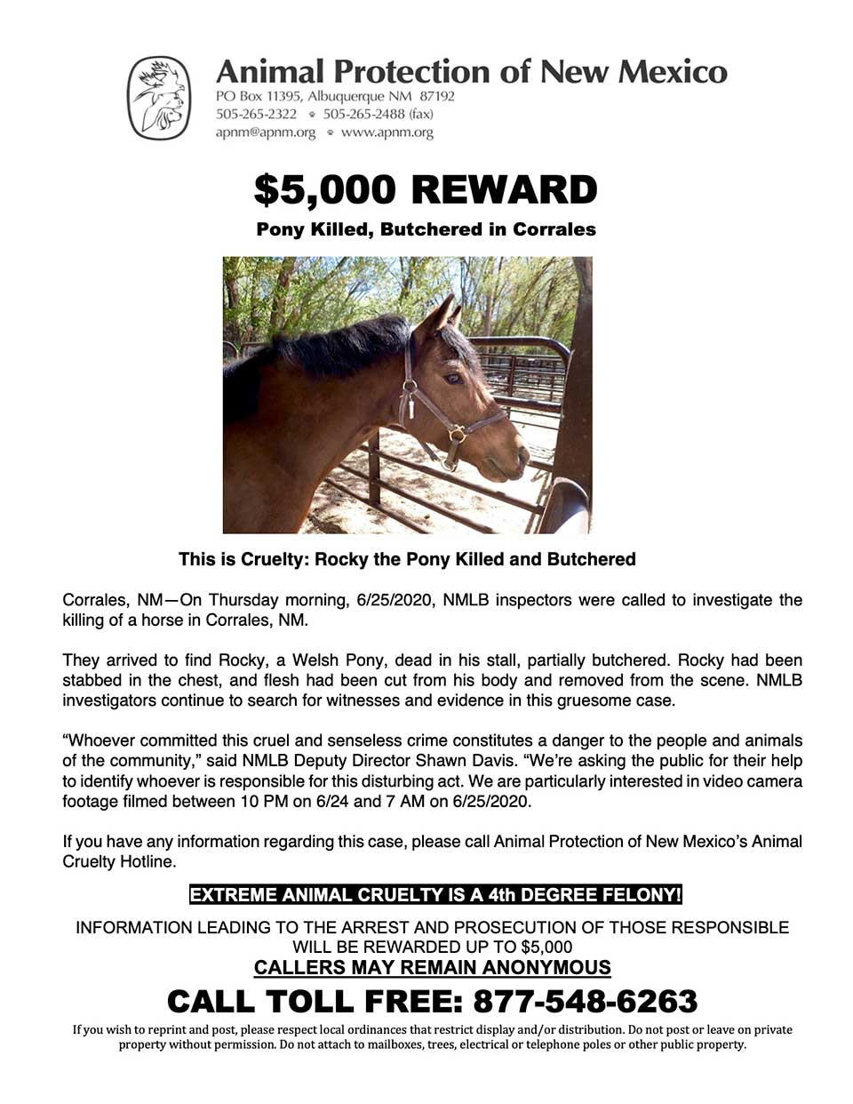 $5,000 REWARD - Pony Killed, Butchered in Corrales