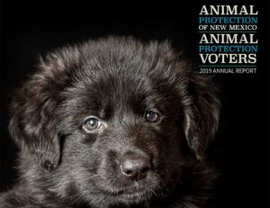 Animal Protection of New Mexico Animal Protection Voters 2019 Annual Report