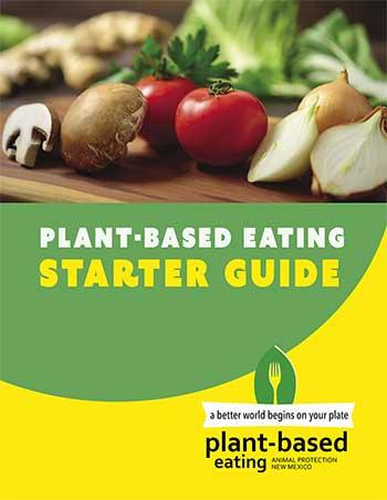 Plant-Based Eating Starter Guide