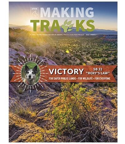 Making-Tracks-2021-Issue-1-400×461
