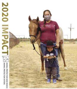 APNM Annual Report 2020